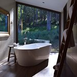 The soaking tub with natural outlook