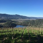 View from the tasting room on a clear day