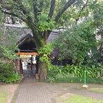 Foto de Kruger Park Lodge