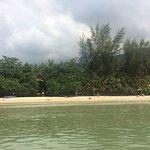 Photo of Coconut Beach Resort