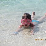 Fun for hours in the crystal clear water at the beach by Royal Palms Beach Club!