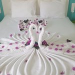 Beautiful towel art