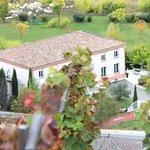 Vue des vignes de la Côte Rôtie