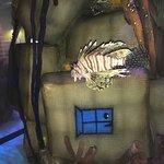 Salt water aquarium in the dining area