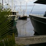 You'll just love the relaxed vibe and charming fishing boat views!