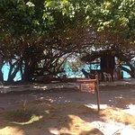 Photo de Hotel San Pedro de Majagua