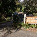 Ocean Wilderness Inn Foto