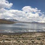 Photo de Lago Chungara
