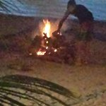 Bonfire on the beach in front of the Beach Grill
