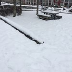 Snowing Feb 2017