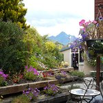 Photo of Melbourne Lodge Bed & Breakfast