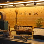 Photo of Lesfeuilles Boutique Prefectural Office
