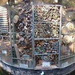 Foto di Cambodia Landmine Museum
