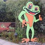 Photo de Whistling Frog Cafe & Bar