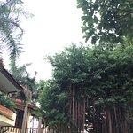 Photo of Blue Waves (Tien Dat) Resort