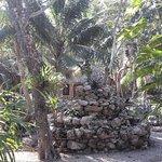 Foto de Villas Ecotucan