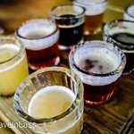 "Sabores ""Colonia Roma"" Food Tour: 4 tastings of microbrews"