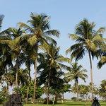 Taj Exotica Goa Foto