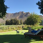 Photo de Montagu Vines Guesthouse
