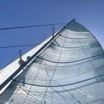 all sails !