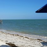 Part of the beach area. Seaweed a problem at all Keys beaches. Glunz does clean it up regularly.