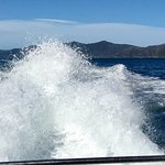 Photo of Marlborough Sounds