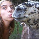 Lelijkste lama ooit