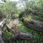 Photo of Santuario Ecologico de Pipa
