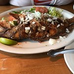 Flank skirt steak and fried red snapper