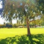Wonderful park area