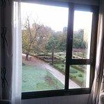 Vista desde la ventana