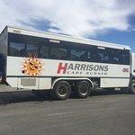 Harrisons Cape Runner Foto
