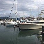 Marina Vallarta boats