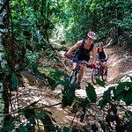 Fun flow trail
