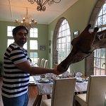 Giraffe Manor Foto
