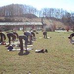 noleggio spazi interni ed esterni per yoga