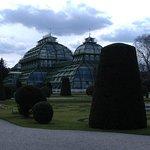 Photo of Palmenhaus Schoenbrunn