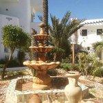 Fontaine et palmiers