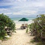 vista della spiaggia dell'hotel dal vialetto di accesso