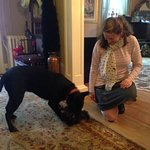 Sammy playing. Sweet doggy.