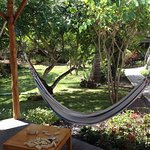 Hammock Area with strong Wifi