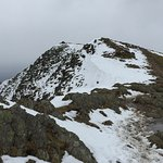 View of the summit from the Goats Water route