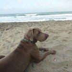 Descansando frente al mar