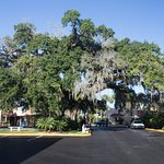 Howard Johnson Inn - Historic ST. Augustine FL Foto