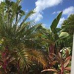 Foto di Sunshine Suites Resort