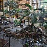 Embassy Suites by Hilton Hotel Phoenix Biltmore Foto
