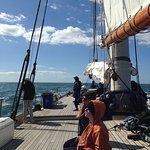 Foto di Yacht America Whale Watching