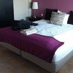 Photo of Hotel Rjukandi