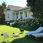 Photo of Montagu Vines Guesthouse