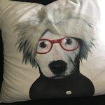 funky cushions.